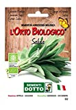 Sdd O.BIO AROM_Salvia Semi, 0.02x15.5x10.8 cm