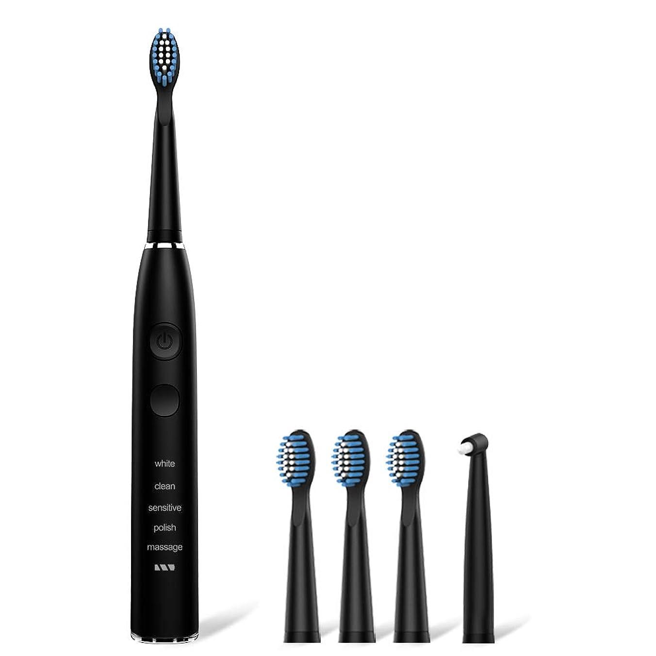 メタリックリフトマエストロ電動歯ブラシ seago 音波歯ブラシ USB充電式8時間 180日に使用 IPX7防水 五つモードと2分オートタイマー機能搭載 替えブラシ5本 12ヶ月メーカー保証(黒)