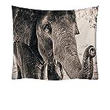 NHhuai Tapiz Tapiz Tapiz Tapiz de Pared para Sala de Estar Dormitorio Manta con Estampado de Elefante Simple