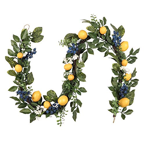 Valery Madelyn 6 Feet/72 Inch Spring Fruit Garland with Artificial Lemons, Blueberry and Green Leaves, Summer Fall Autumn Garland for Front Door, Wall and Home Decorations