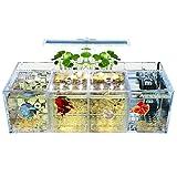 Siqi Betta Fish Tank Material acrílico Mini acuario de escritorio Goldfish Mini tanque de peces Sala de aislamiento de peces enfermos, con filtro de bomba de agua, iluminación (4 celosías)