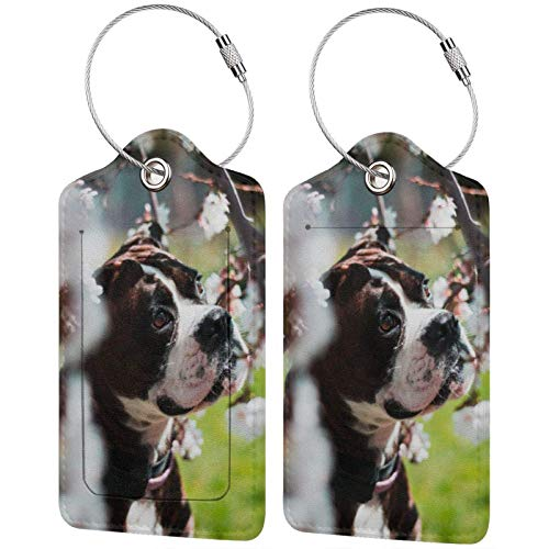 Leather Travel Luggage Tags,Pet Dog Printed Travel Id Labels,Business Card Holder,Suitcase Labels,Travel Accessories,with Privacy Cover Stainless Steel Ring