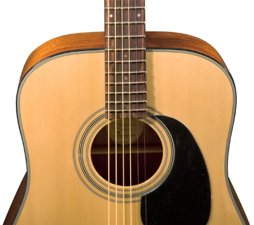 Bristol BD-16 Dreadnought - Guitarra acústica: Amazon.es ...