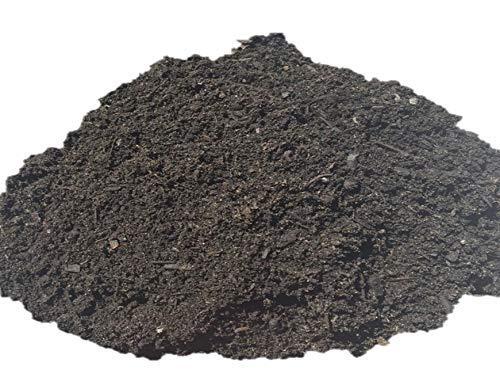 CARBOGARDEN® Premium BodenAKTIV-Konzentrat, 20 Liter, 50% wertvoller Pflanzenkohle, Typ: Terra Preta Schwarzerde