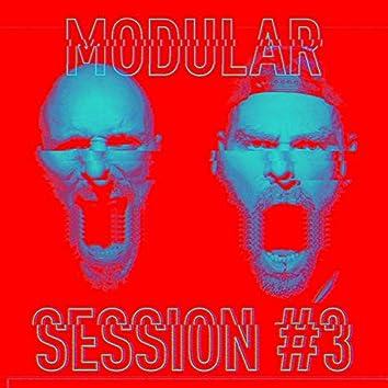 Modular Session #3