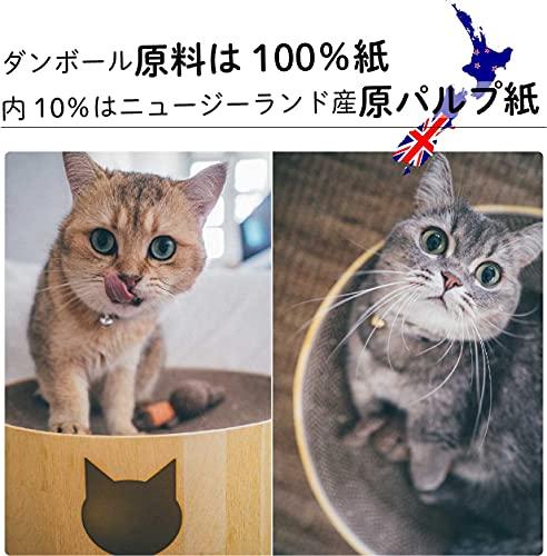 【AmazonCM登場商品】猫壱バリバリボウル(本体,レギュラー)