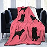 80'x60' Throw Blanket Affenpinscher Dog Ultra-Soft Micro Fleece Blanket Super Soft for Bed Couch Living Room