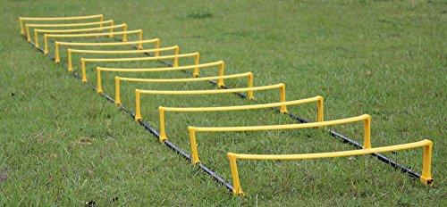 ラダー + ミニハードル 【 6段 】 筋トレ 練習 瞬発力 俊敏性向上トレーニング