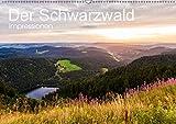 Der Schwarzwald Impressionen (Wandkalender 2019 DIN A2 quer): Der Schwarzwald in faszinierenden Aufnahmen. (Monatskalender, 14 Seiten ) (CALVENDO Orte) - Werner Dieterich