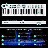 Immagine 2 arturia keylab 49 essential tastiera