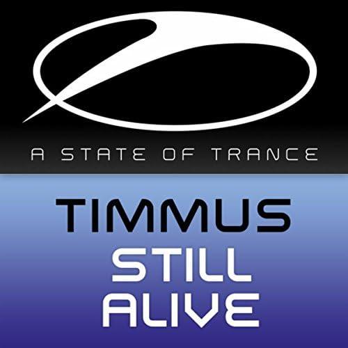 Timmus