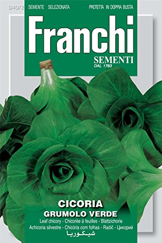 Franchi Seeds of Italy - Chicory - Grumolo Verde - Seeds