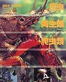 昆虫・両生類・爬虫類 (講談社 動物図鑑 ウォンバット)