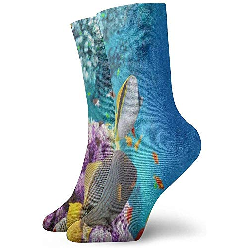 Dydan Tne Crew Socks Beautiful Underwater World Fish Coral Reef Athletic Socks Stylish Short Boot Stocking