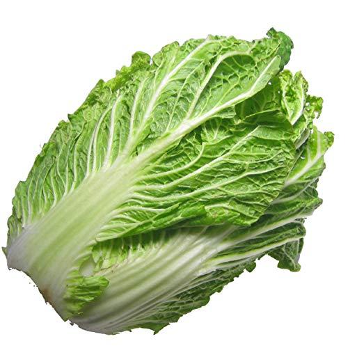 白菜 4玉 低農薬栽培