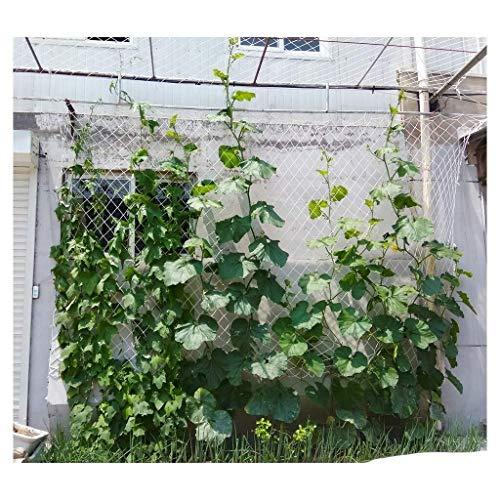 NiUFHW veiligheidsnet, voor buiten, voor het hek, kattennet, decoratief net, geschikt voor klimplanten en balkonleuningen, afneembaar, 2 x 2 m, 3 x 3 m, 5 m