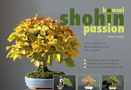 Bonsai shohin passion. How do I create Shohin?