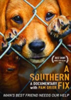 Southern Fix [DVD] [Import]
