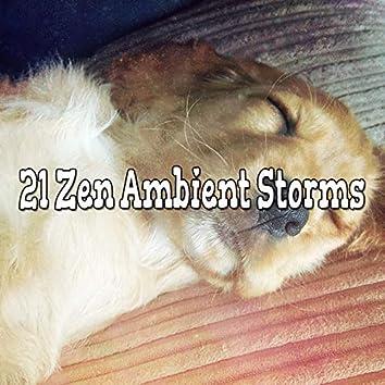 21 Zen Ambient Storms