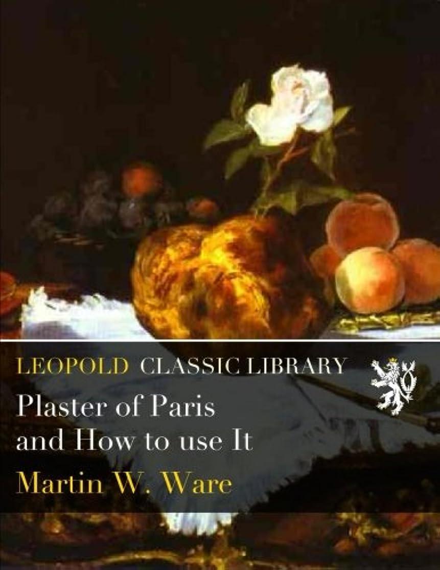 大陸望みスプレーPlaster of Paris and How to use It