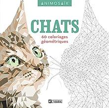 Chats : 60 coloriages géométriques (Animosaïk)