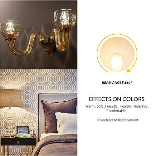 G14 LED Filament Globe Bulb 4W(40W Equivalent), LVWIT Dimmable 2700K Warm White E26 Screw Base, Decorative Edison Light Bulb, UL-Listed(6-Pack)