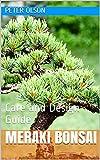 Meraki Bonsai: Care and Design Guide (English Edition)