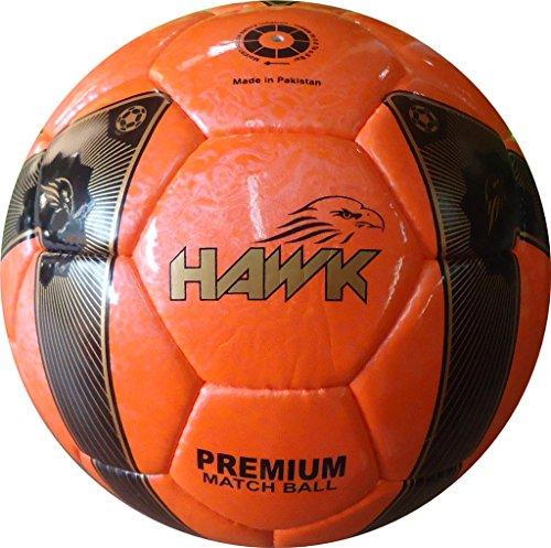 Professionell Fußball- Hawk