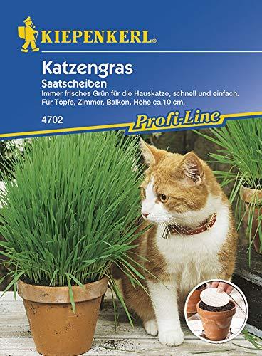 Kiepenkerl 4702 Katzengras (Saatscheibe)
