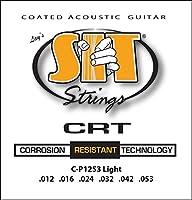 SIT STRINGS エスアイティストリングス アコギ用コーティング弦 CRT Coated Strings Light CP1253【国内正規品】
