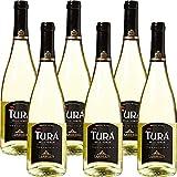 Vino Bianco Frizzante | Turà Trevenezie IGT | Veneto | 6 Bottiglie 75Cl | Per Happy Hour ...