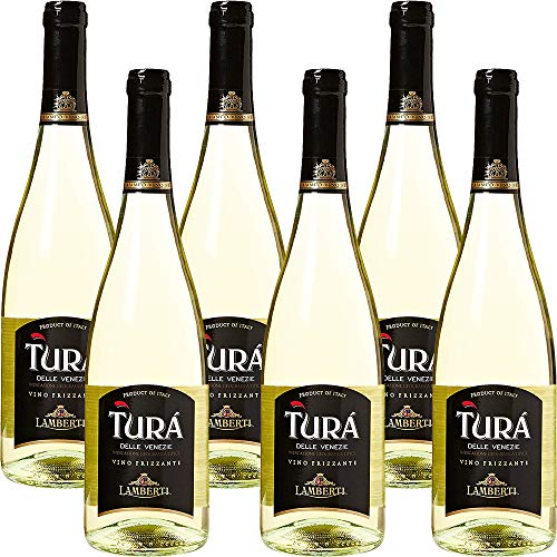 Vino Bianco Frizzante | Turà Trevenezie IGT | Veneto | 6 Bottiglie 75Cl | Per Happy Hour | Dopocene Easy Chic | Idea Regalo