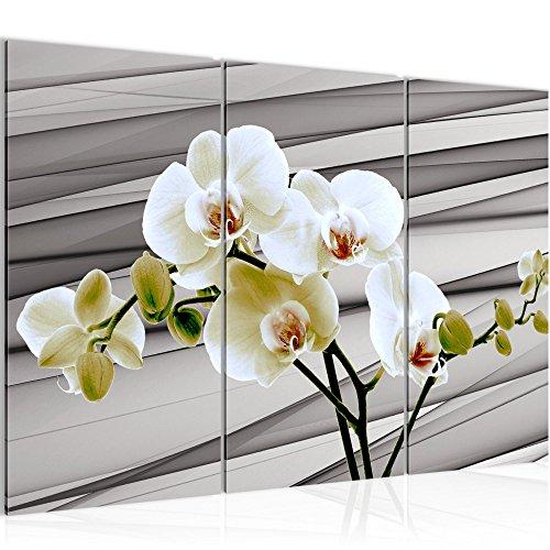 Runa Art Bilder Blumen Orchidee Wandbild 120 x 80 cm Vlies - Leinwand Bild XXL Format Wandbilder Wohnzimmer Wohnung Deko Kunstdrucke Grau 3 Teilig - Made IN Germany - Fertig zum Aufhängen 202031b