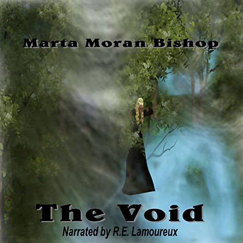 The Void  By  cover art