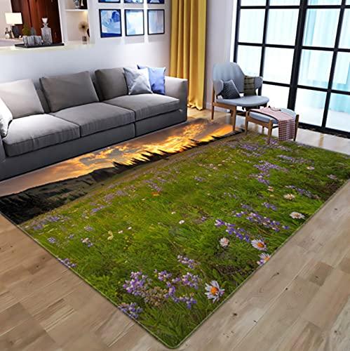 Creativity Flowers 3D Digital Printed Carpet, Kids Room Play Area Rugs Hallway Floor Mat Home Decor Large Carpets For Living Room 80X150Cm