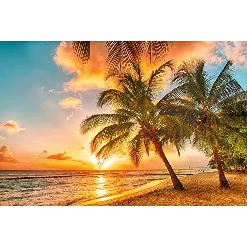 GREAT ART Mural de Pared – Playa De Barbados En La Playa De Arena Al Atardecer – Mar Océano Naturaleza Paraíso Naturaleza Foto Papel Pintado Y Tapiz Y Decoración 210 x 140 cm