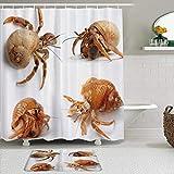 LISNIANY Conjunto De Ducha Cortina Alfombra,Conjunto de Temas de Animales Marinos de cangrejos ermitaños del mar Caribe,Uso en baño, Hotel