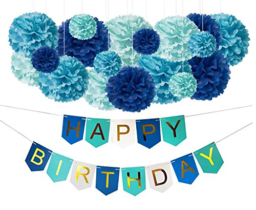 DIY Blue Birthday Decorations - Happy B-Day Party Banner Sign and DIY Tissue Paper Pom-Pom Decor Kit for Kids, Teens, Boys, Girls - Under the Sea Beach Shark Whale Pool Dragon Theme Party Supplies