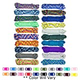 West Coast Paracord Zesty 550lb Survival Paracord Random Combo Crafting Kit 10 Colors of 500lb Cord and 10 Buckles - Type III Paracord - Make 10 Paracord Bracelets - Great Gift (Zesty, 200 Feet)