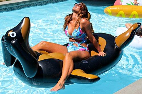 Dachshund Pool Float