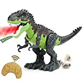 BeebeeRun Dinosaur Toys, Remote Control Walking Tyrannosaurus Rex with LED Light Up and Roaring, RC Dino Toys for Kids 3-12 Years Old Boys and Girls, Glowing Eyes Projection Spray Laying Egg