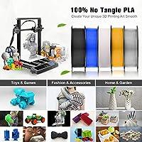 SUNLU Filamento per Stampante 3D, Filamento PLA 1.75, Tangle Free Filamento PLA, 1KG Trasparente #3
