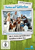 Astrid Lindgren: Ferien auf Saltkrokan Spielfilm-Edition [5 DVDs]