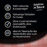 Cesar Nassfutter Feines im Frischebeutel – Variation, 2er Pack ( 2 x 24 x 100 g) - 2