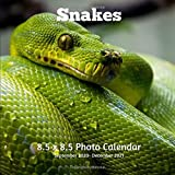 Snakes 8.5 X  8.5 Photo Calendar September 2020 -December 2021: Monthly Calendar with U.S./UK/ Canadian/Christian/Jewish/Muslim Holidays- Nature Snakes Reptiles