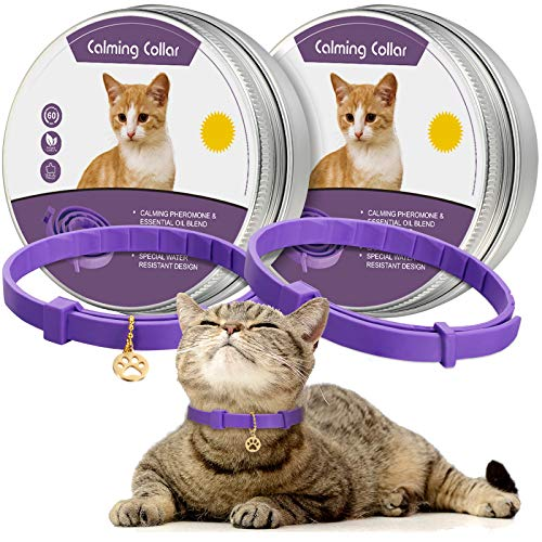 2 Pieces Calming Cat Collar Lavender Scent Relaxing Cat Collar Adjustable Longlasting Reduce Anxiety Cat Collar with Pendant for Puppy Cat Reduce Stress Aggression and Anxious Behavior, up to 15 Inch
