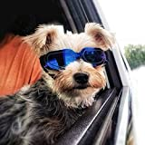 PETLESO Dog Goggles- Doggie Sunglasses Windproof Eye Protection Goggles for Small Dogs Cats, Blue