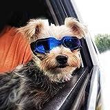PETLESO Small Dog Goggles- Small Doggie Sunglasses Anti-UV Eye Protection Goggles for Small Dogs, Blue