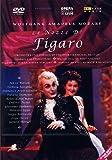 Mozart, Wolfgang Amadeus - Die Hochzeit des Figaro (Le nozze di Figaro) (Opera National de Lyon)