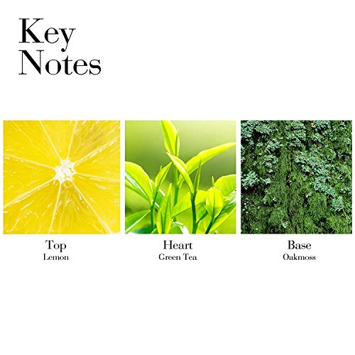 Perfume Cologne | Elizabeth Arden Green Tea Scent Spray Gift Set, Gym exercise ab workouts - shap2.com